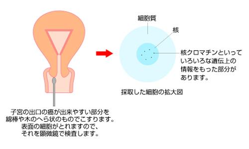 検査 種類 生体